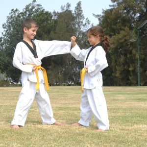 Pinnacle of Martial Arts, Taekwondo, Fitness, Kung Fu, Karate & Self Defence lessons in Marrickville Inner West of Sydney & Chester Hill Bankstown Area South West Sydney for Kids, Teens & Adults.