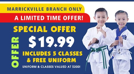 martial arts in marrickville