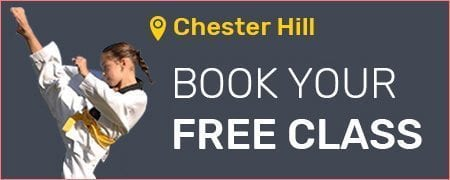 Martial Arts in Chester Hill for kids, teens and adults