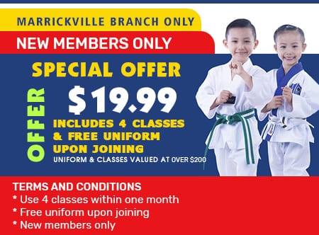 Martial Arts in Marrickville for kids, teens and adults