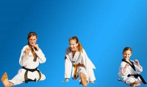 Pinnacle Martial Arts objectives