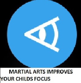 Focus through Pinnacle Martial Arts in Marrickville and Chester Hill