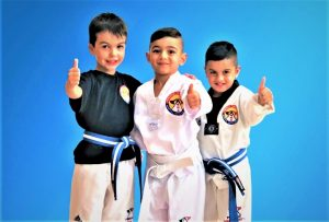 Mini Rangers-Kids Martial Arts classes in Marrickville Inner West and Chester Hill in South West Sydney