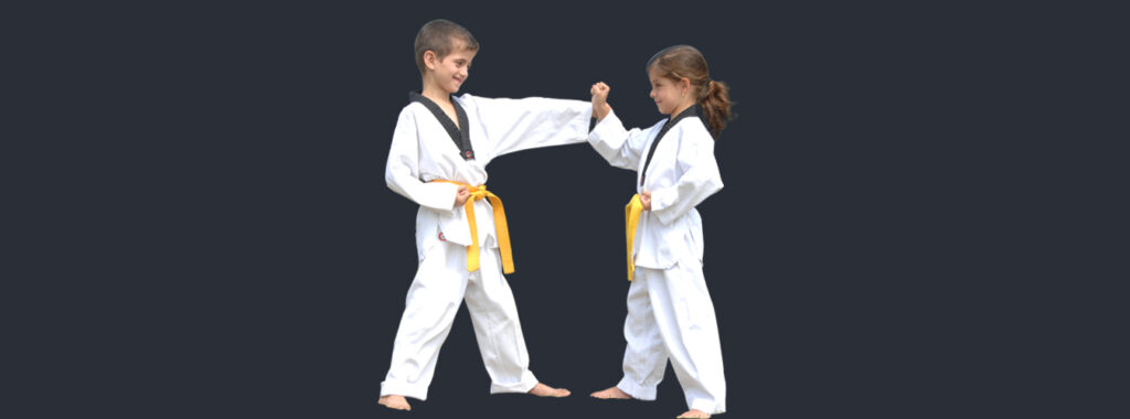 Martial Arts in Marrickville for kids teens and adults