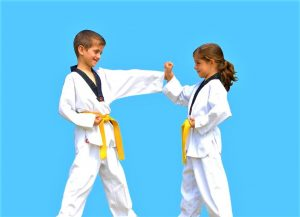 Martial Rangers-Pinnacle kids Martial Arts in Marrickville Inner West and Chester Hill in South West Sydney