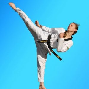 Martial Arts in Sydney for kids teens & adults of all ages & levels