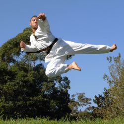 Karate Chester Hill South West Sydney & Auburn for Kids Teens Adults Families